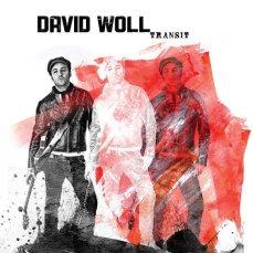 david-woll